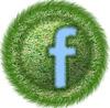 facebookmeadowss